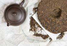 Tìm hiểu chi tiết về các loại trà